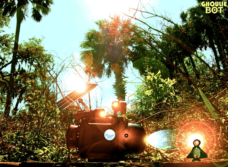 Ghoulie Bot - Taking in the sun and the rays again