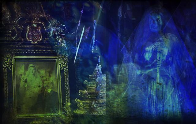 Optivion- The Bride at The Haunted Mansion - Walt Disney World