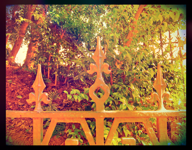 The Optivion - Fence - Haunted Mansion - Walt Disney World