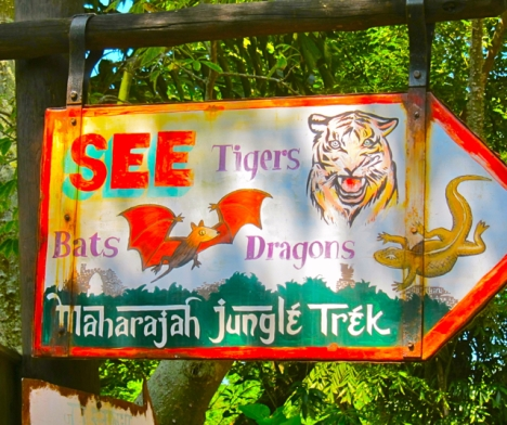 Optivion - Disney Maharajan Jungle