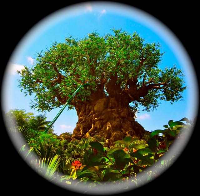 Optivion - tree of life